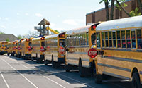 line of school buses in front of building