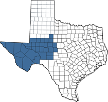 Texas map of Jackie's territory (West Texas area)