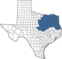 Texas map of Nicole's territory (DFW area)