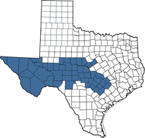 Texas map of Charles' territory (West Texas area)