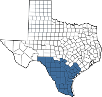 Texas map of Adrian's territory (South Texas area)