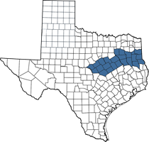 Texas map of Heide's territory (East/Central area)