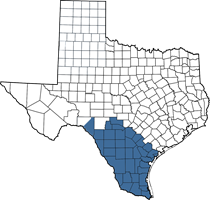 Texas map of Beto's territory (South Texas area)